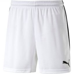 Mens Puma Pitch Handball Shorts